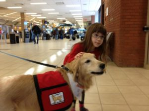 airport-ac-regina-airport-therapy-dogs-feb-26-2015-2